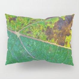 Vine Leaf in autumn fall macro 6 Pillow Sham
