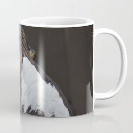 National Aviary - Pittsburgh - Stellers Sea Eagle 2 Coffee Mug
