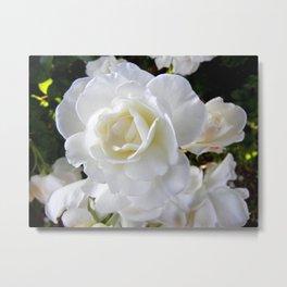 In Bloom Metal Print