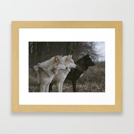 Cana, Logan, and Luther Framed Art Print