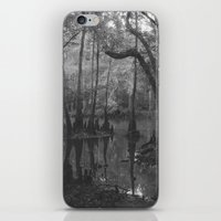 florida iPhone & iPod Skins featuring Florida Swamp by Kevin Russ