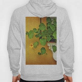 Window Box Hoody