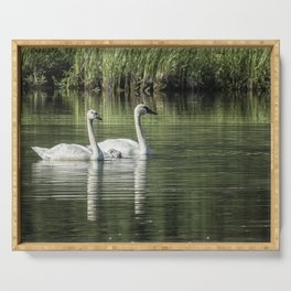 Family of Swans, No. 1 Serving Tray