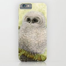 Northern Spotted Owls Slim Case iPhone 6s