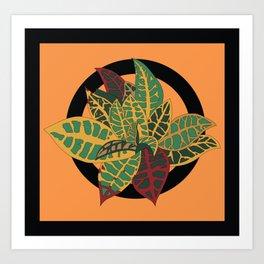 Croton Box Brigade Art Print