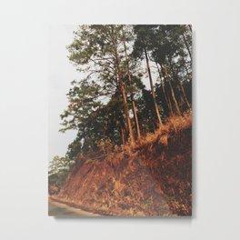 Lonely Summer Road Metal Print