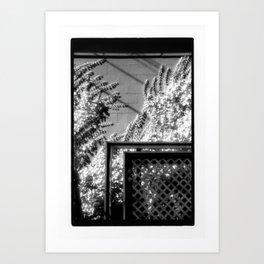 Terrace & Vines Art Print