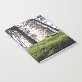 A Walk in the Park Notebook