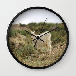 rare pashmina Wall Clock