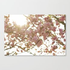 Peeking Through Canvas Print