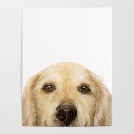 Golden retriever Dog illustration original painting print Poster