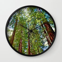 Muir Woods Study 18 Wall Clock
