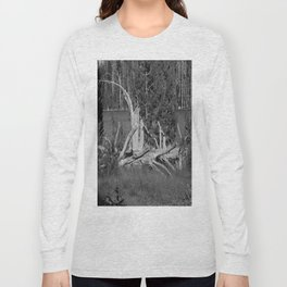 road trip, wood pile, snag by the lake Long Sleeve T-shirt