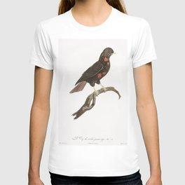 Little Lilac-breasted roller from Histoire Naturelle des Oiseaux de Paradis et Des Rolliers (1806) b T-shirt