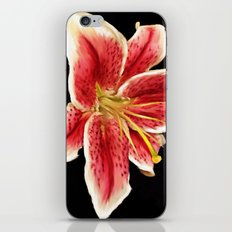 Stargazer iPhone & iPod Skin