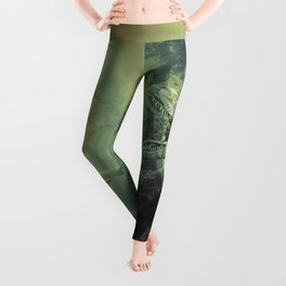 Jurassic Kitty Hunt Leggings