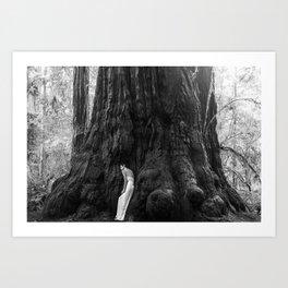 Redwood Self Portrait I Art Print
