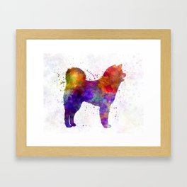 Akita Inu 01 in watercolor Framed Art Print