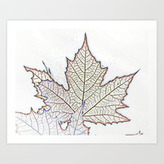 spectacular autumn colors of the leaves Art Print