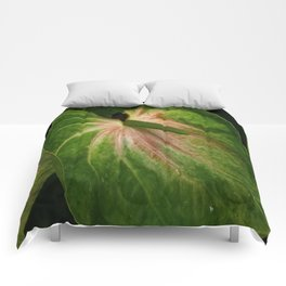 Tail Flower Comforters