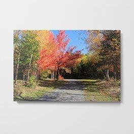 Autumn Footpath Metal Print