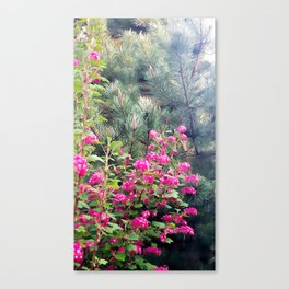 Spring Blooming Flowers Canvas Print