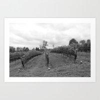 Grape Vines in Mono Art Print