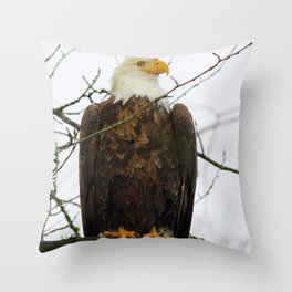 Bold Eagle Throw Pillow