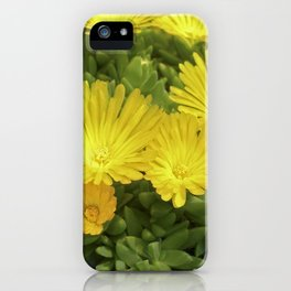 yellow cactus bloom IV iPhone Case
