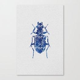 Blue Beetle II Canvas Print