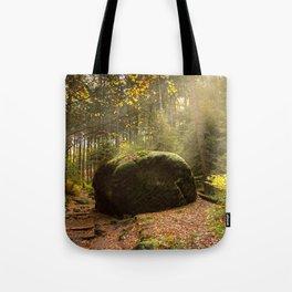Large Boulder in Elbe Sandstone Mountains Tote Bag