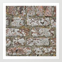 old wall bricks Art Print