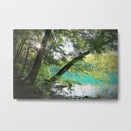 Aqua Blue Lake and Trees Metal Print