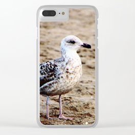 Seagull on the beach Clear iPhone Case