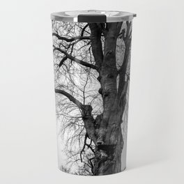 Blenheim, England Travel Mug