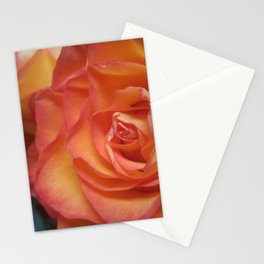 Little Rays of Sunshine in Golden Roses Stationery Cards