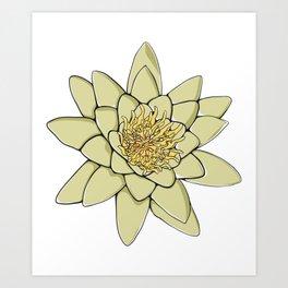 Nenuphar White Water Lily Flower Art Print