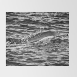 Common Dolphin Throw Blanket