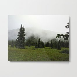 Misty Colorado Pines Metal Print