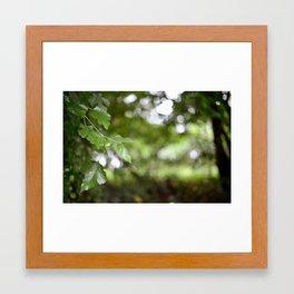 Green Goodness Framed Art Print