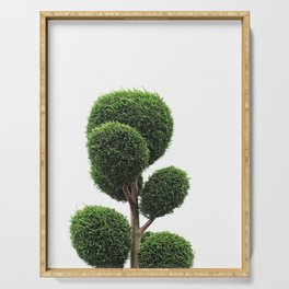 Topiary Serving Tray