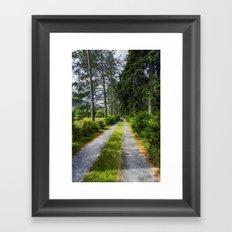 Country Path Walks Framed Art Print