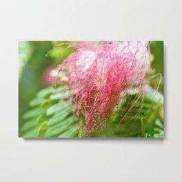 Pink Costa Rican Flower Metal Print
