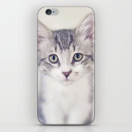 Portrait of a Kitten iPhone Skin