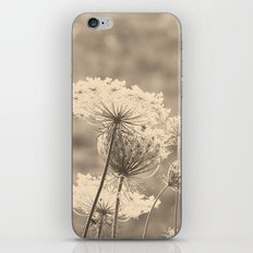 Lace in the Meadow iPhone & iPod Skin