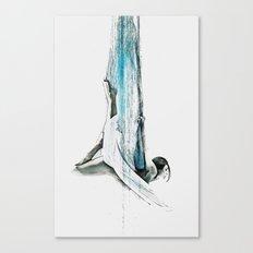 Web - Aerial Dancer Canvas Print