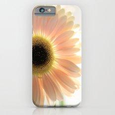 Salmon Gerbera iPhone 6s Slim Case