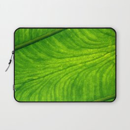 Leaf Paths Laptop Sleeve