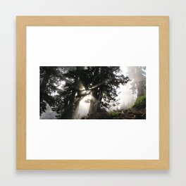 Hike the NW Framed Art Print