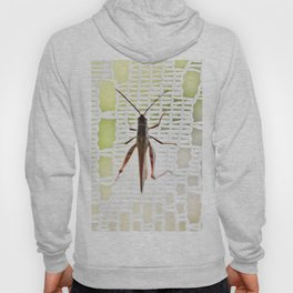 Grasshopper in lace curtain Hoody